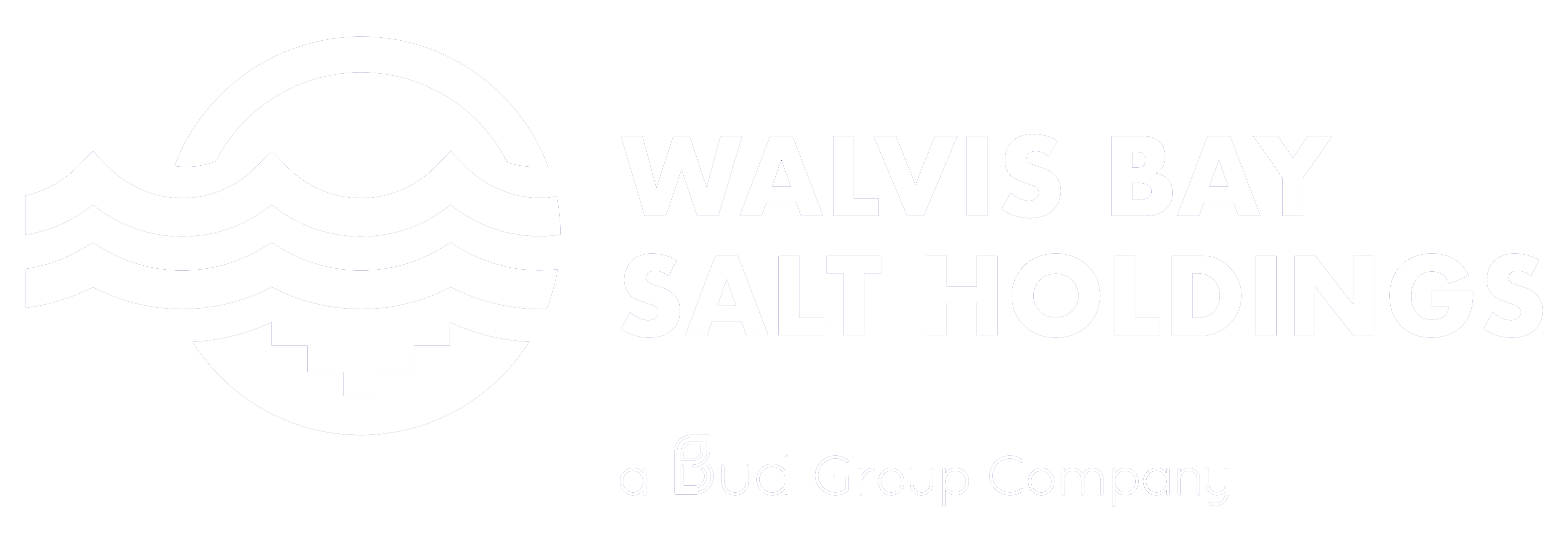 Walvis Bay Salt Holdings (Pty) Ltd
